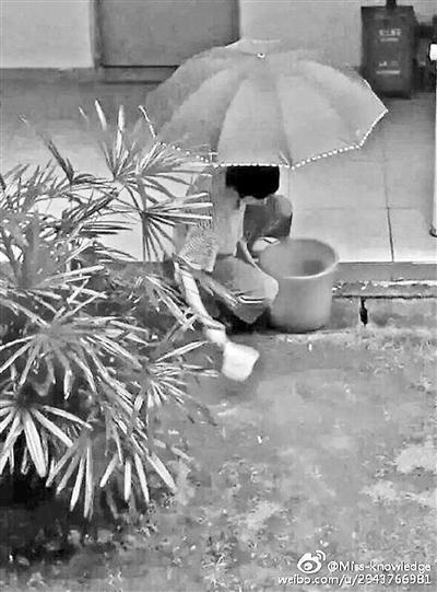 门生用各类办法搜集雨水