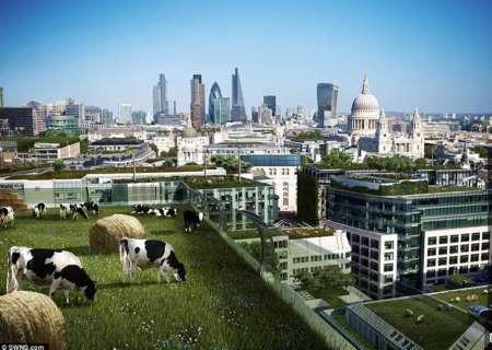 英专家设计未来房屋概念图 更考虑人性需求图片