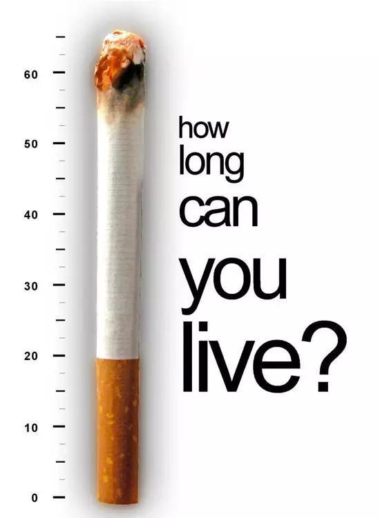 只希望以这组触目惊心的戒烟公益海报,来唤起每个人的健康意识.图片