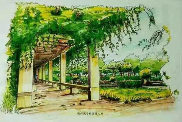 这套手绘明信片系列均由景观工作室的李伦,赵海田和曹星云等人合力