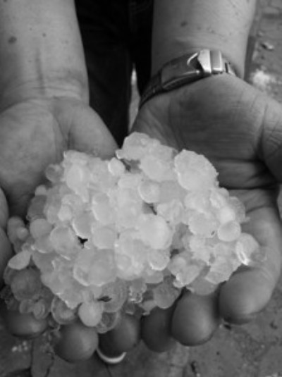 葫芦岛突降冰雹 鸡蛋般大小(图)
