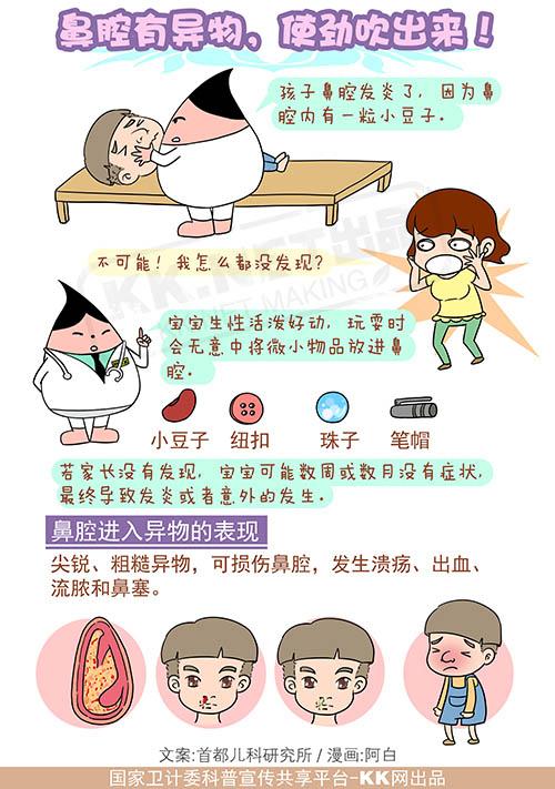 发炎鼻腔结构图