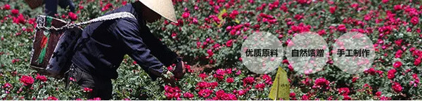 wwwvv999com_关键,还能吃!又浪漫又美容又满足吃货的心! 【点http://www.wxvv.