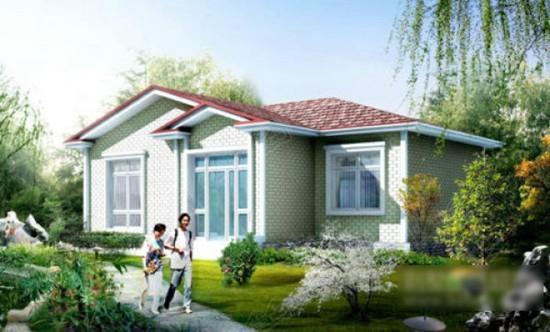 农村房设计案例,新农村小户型房子设计效果图