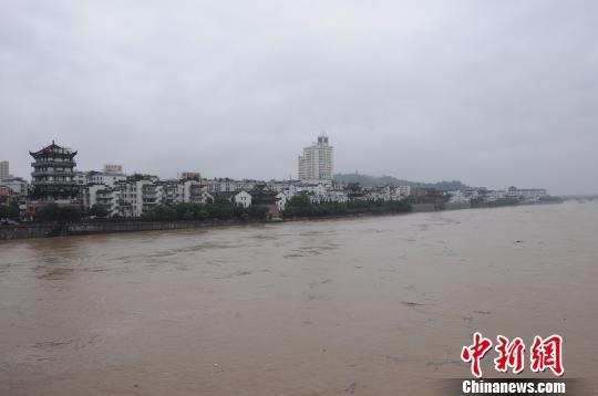 暴雨致浙江兰溪水位垂危 江心公园被围困成孤岛 于兴勇 摄