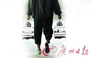 白叟拎着鸟笼在沙面漫步。广州日报记者骆昌威摄(材料图像)