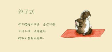 8个动物瑜伽体式,可爱到爆!图片