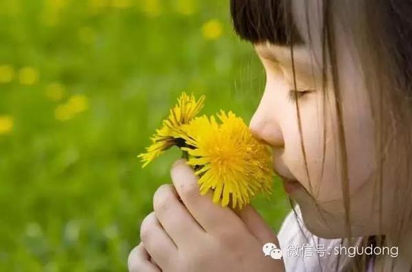 知识 | 沉香之香:五种你无法形容的香味