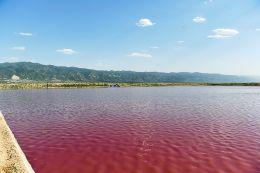 运城盐湖局部水域出现玫瑰色