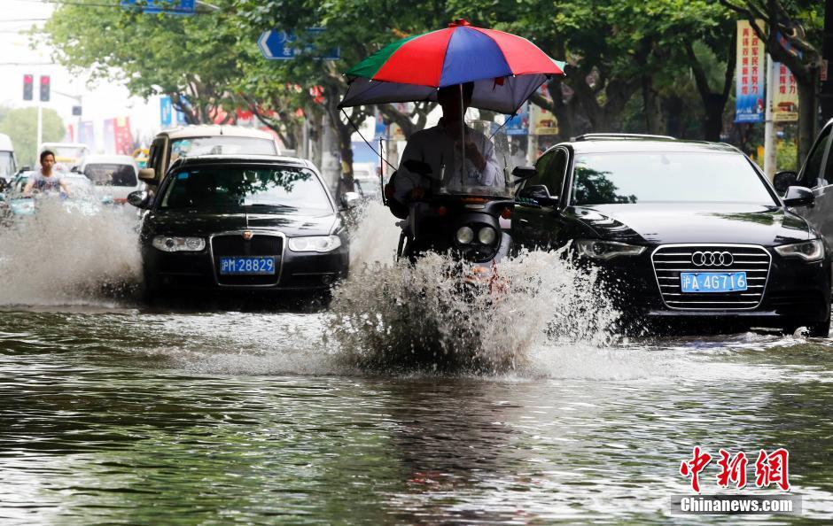 上海暴雨牌照_上海遭暴雨袭击 市民出门直接观\