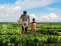 《爸爸去哪儿第三季片花》胡军儿子浴缸里找泡沫 父子上演大草原穿越