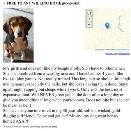 乍一看这则告白,你会认为这是要送养宠物狗,没想到该女子末了求人连忙把女友领走。(图像来历:《逐日邮报》)