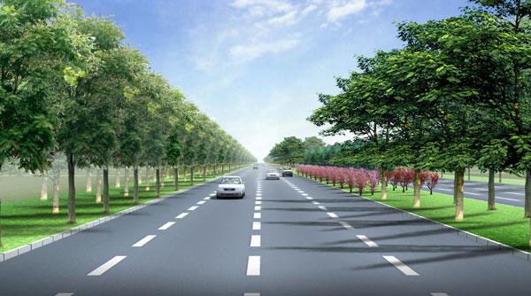 城市道路绿化设计