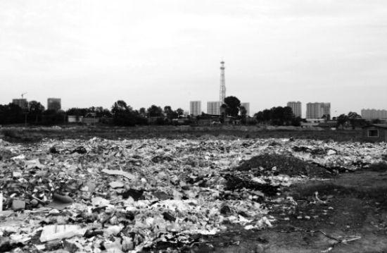 丹东新区视光产业园一直无法开工的工业用地上倒满了垃圾