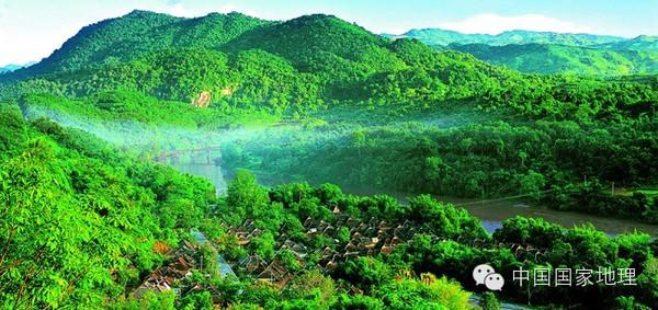 中国最美的十大森林,每个都值得走一次图片