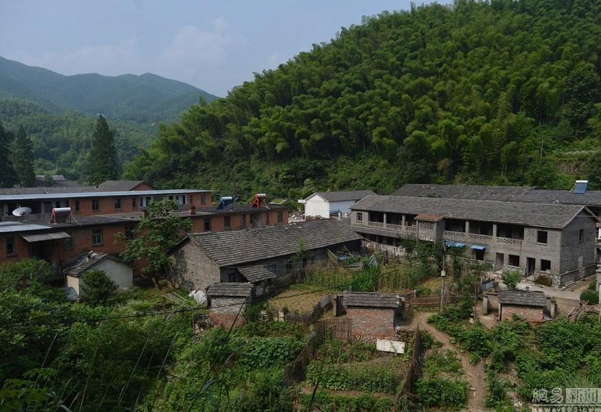 图为皖西化工厂被贴了很多告示—这里将被打造成画家村.图片