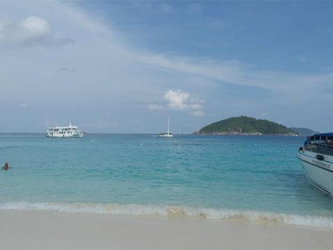 龙虎园海鲜自助_跟我走吧,月末就出发,在泰国这美丽的季节