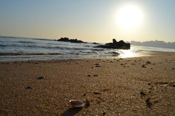 秦皇岛乐岛海洋主题公园,开心一日游!