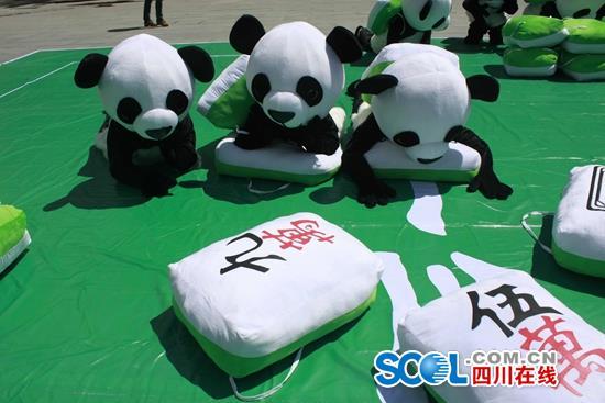 """""""国宝玩国粹""""——大熊猫打麻将大赛在九寨沟景区举行"""