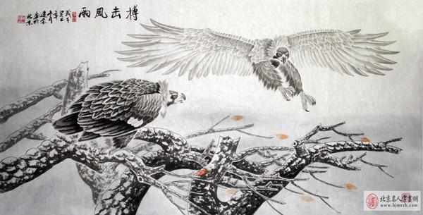 王建金工笔画 鹰 欣赏