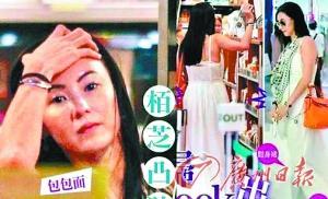 张柏芝 广州日报