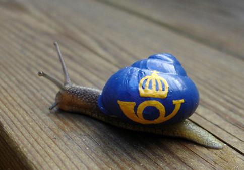碎了壳的蜗牛图片_蜗牛卷发图片_蜗牛散步的图片 ...