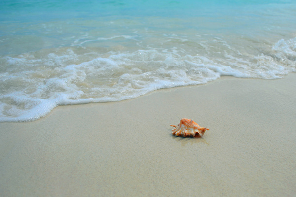 【沙巴】风下之乡探访美人鱼岛