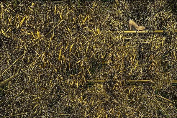 森系复古手绘画框