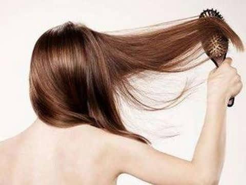 侧伯叶可以治好脱发, 白发