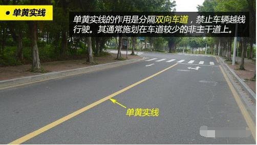 道路交通标记线大全 10分钟学会从此不违章