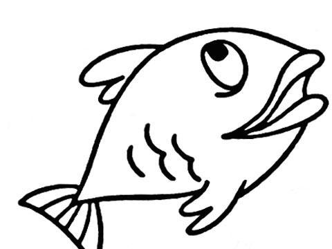 O2O生鲜平台 大嘴鱼 获千万天使融资