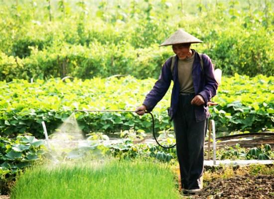 中国农村老头考�:`�9��_日本人眼里的中国农村生活:跟100年前没差(组图)