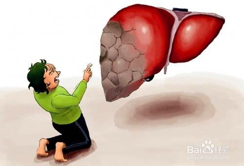 肝的解毒原理_肝脏是人体最重要的代谢和解毒器官.