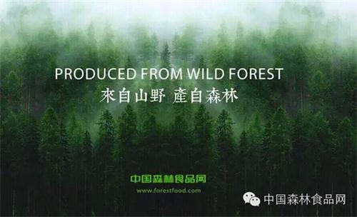 """""""中国森林食品产业战略启动仪式新闻发布会""""在京召开图片"""