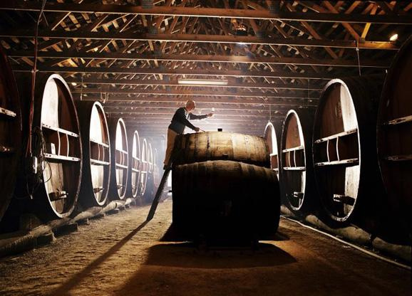 【红酒知识】葡萄酒与橡木桶