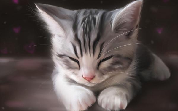 手绘呆萌猫咪图片大全