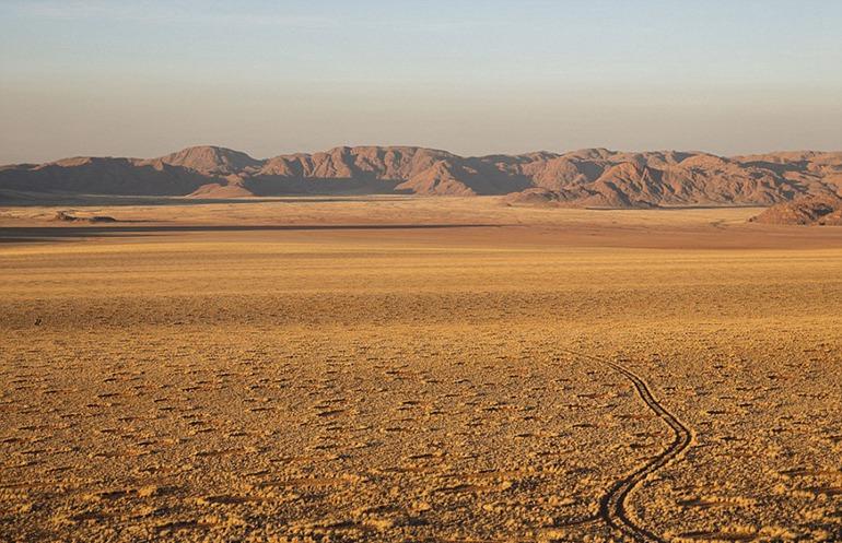 据英国《每日邮报》7月14日报道,位于非洲南部西海岸的纳米比亚荒漠上