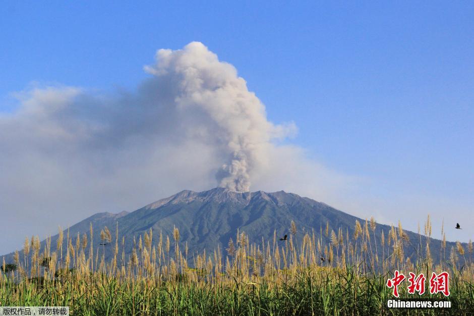 当地时间2015年7月23日,印尼外南梦,拉翁火山持续喷发。拉翁火山已连续喷发数周,造成附近机场暂时性关闭。印尼火山学家基德·斯万提卡说,火山爆发导致火山灰喷上3300米高空,而风力正朝巴厘岛方向吹。