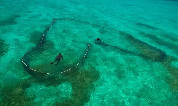 2015年7月17日,符氏兄弟在配合围网捕鱼。捕鱼仍是岛礁上最重要的活计。17岁开始,符名友就和弟弟符名岗结伴出海去南沙西沙捕鱼。