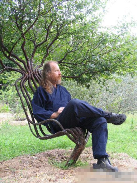 老人耗时7年种植出的树椅