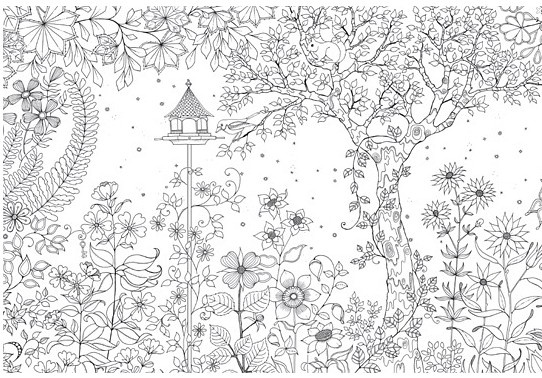 秘密花园涂色第一张_秘密花园涂色样本及成品作品参考展示