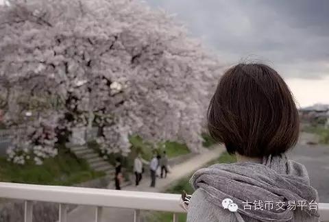 上看_你站在桥上看风景