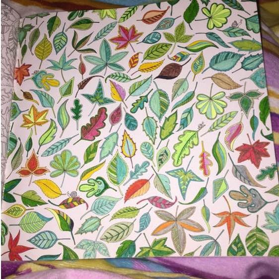 秘密花园涂色第一张_秘密花园涂色作品欣赏大神和屌丝世界的差距