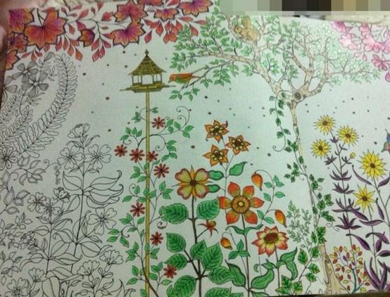 秘密花园涂色第一张_【秘密花园涂色赏析】【图】秘密花园涂色赏析