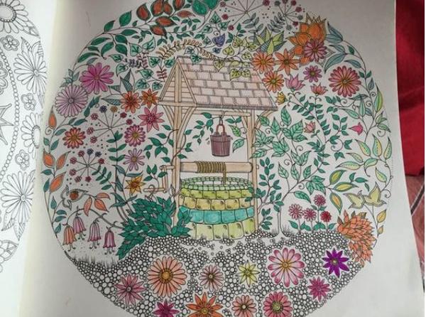 秘密花园涂色第一张_最近都在玩的秘密花园手绘涂色来分享你们的