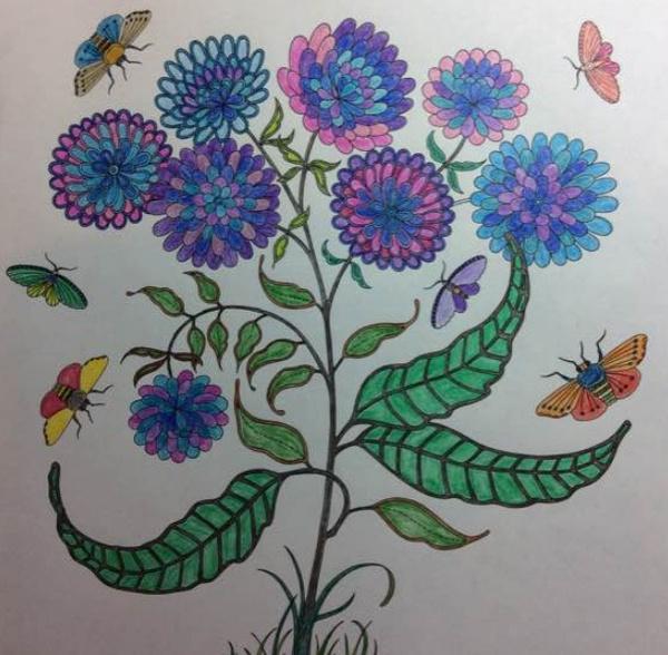 秘密花园涂色第一张_