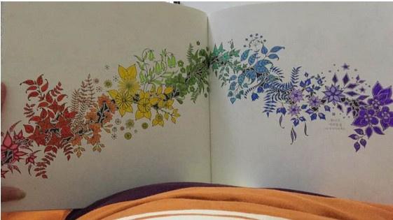 秘密花园涂色第一张_秘密花园未涂色_指间韶光图片专辑