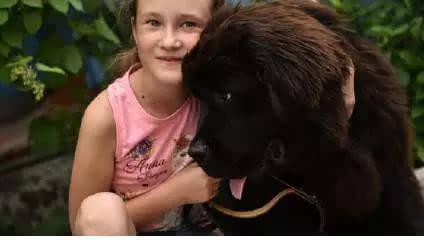 一个小女孩写信给开头女生要狗,结果竟然a开头王字名字总统的名字普京图片
