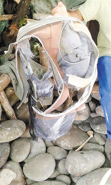 留尼汪岛居民发现的其他物品。图/CFP