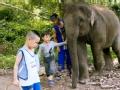 《爸爸去哪儿第三季片花》夏天同大象交朋友 诺一热心邀大象共散步